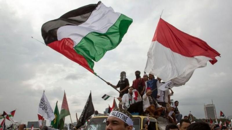 Langkah RI Dukung Palestina