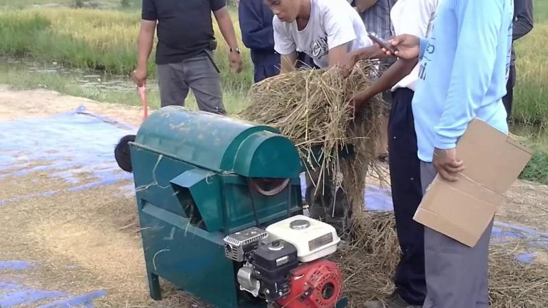 Lima Kelompok Tani Lambar Dapat Bantuan Mesin Perontok