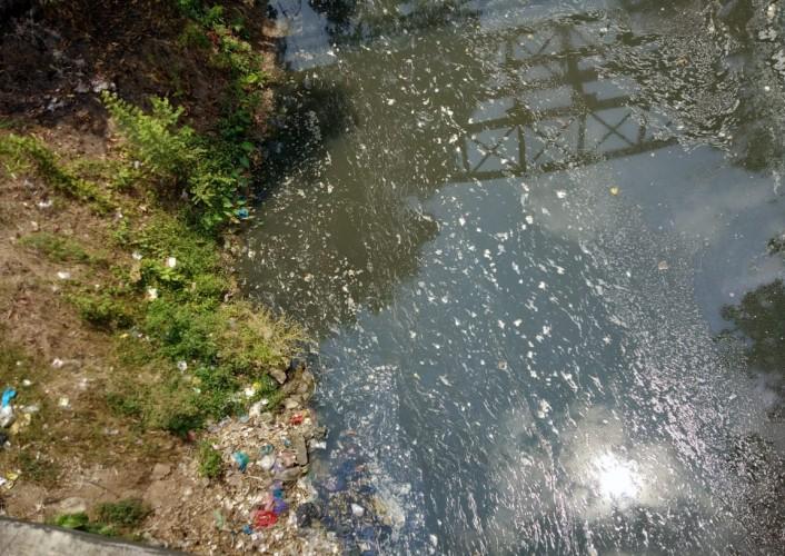 Limbah Pabrik Sagu Diduga Cemari Sungai Way Semah