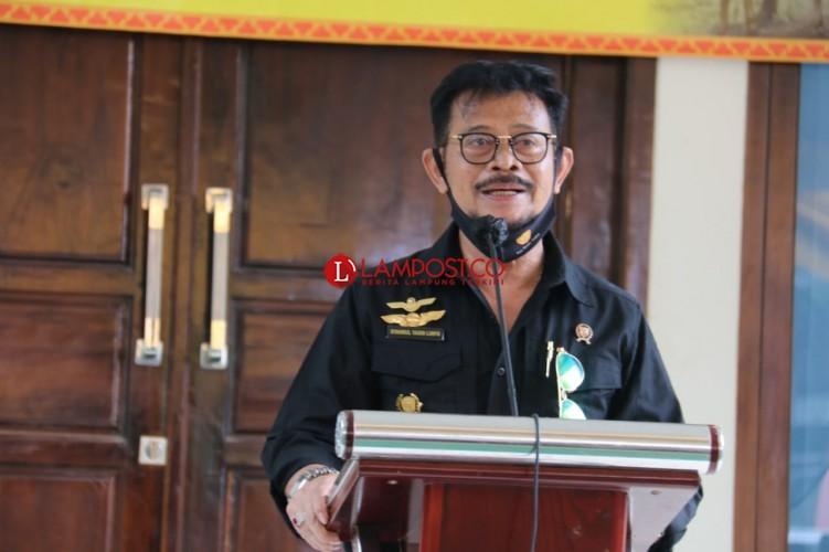 Mentan Syahrul Pastikan Ketersediaan Pangan Lampung Aman