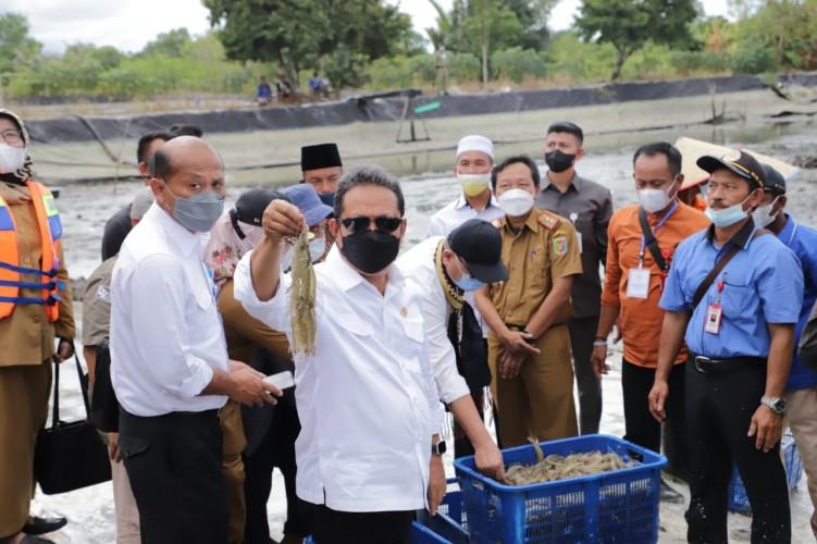 Menteri KKP: Revitalisasi Jadi Solusi Terbaik untuk Tingkatkan Produktivitas Udang