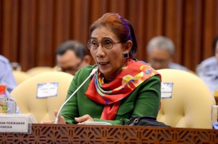 Menteri Susi Curiga Ada Rente di Balik Impor Ikan