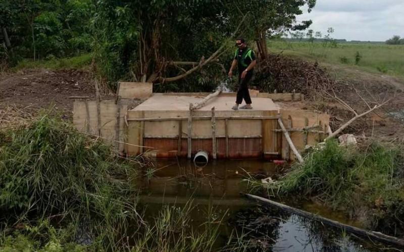 Mesuji Butuh 400 Pintu Air Atasi Dampak Air Payau