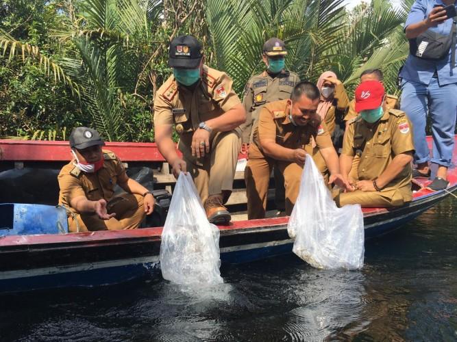 Mesuji Pulihkan Habitat Ikan Air Tawar