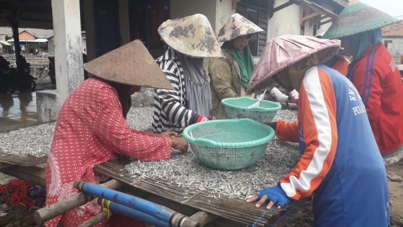 Musim Hujan, Hasil Produksi Ikan Asin di Pulau Pasaran Menurun