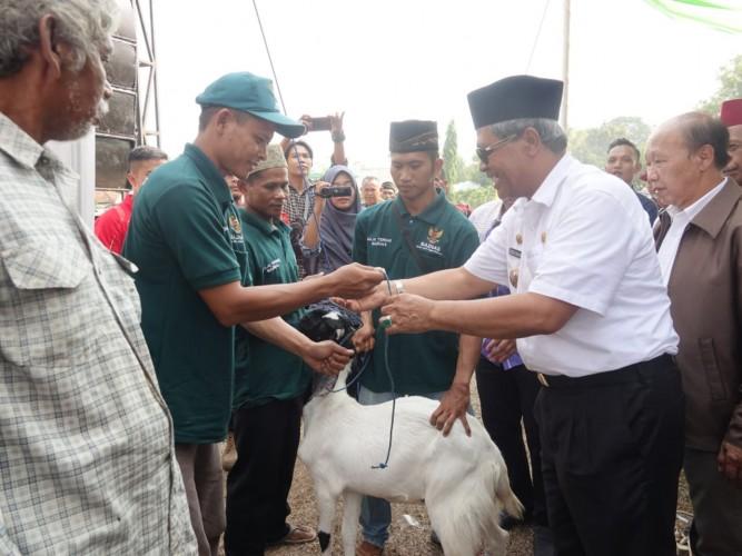Mustahik di Lampung Tengah Terima 282 Kambing