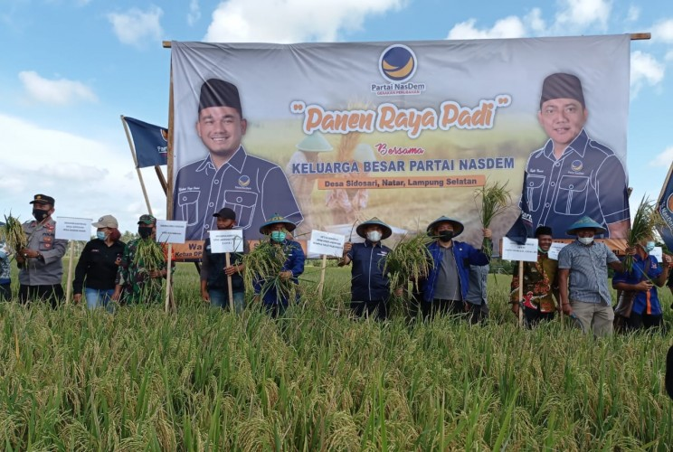 NasDem Optimistis Lampung Jadi Lumbung Pangan Nasional