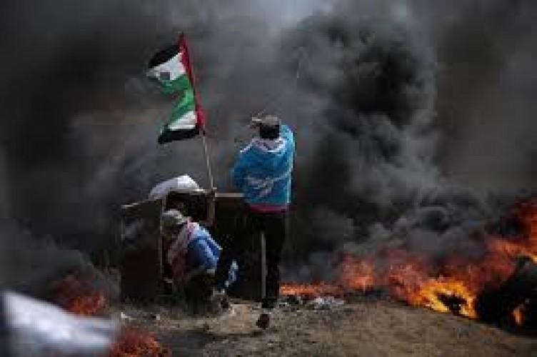 Nasib Palestina