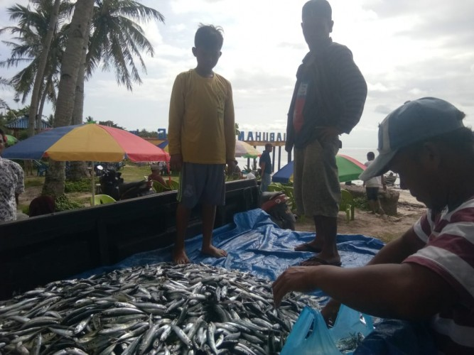 Nelayan Labuhan Jukung Dapat Berkah Hasil Tangkapan Ikan Melimpah