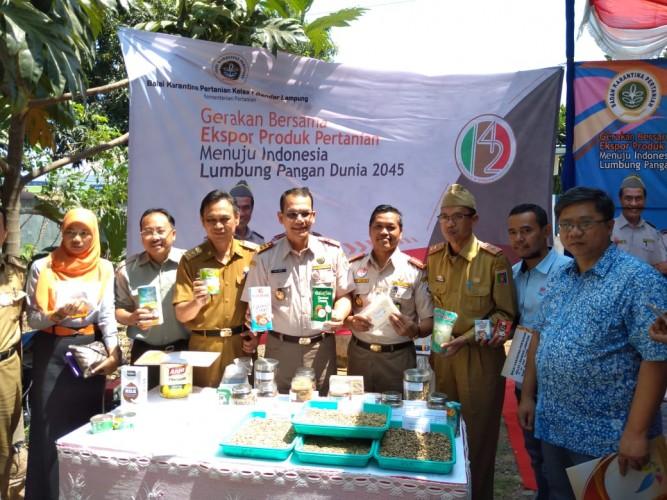 Ekspor Komoditas Pertanian Lampung Capai Rp14,4 Miliar/Hari