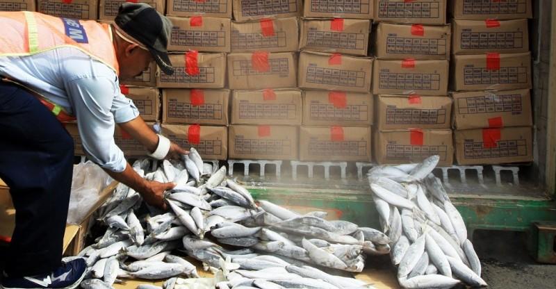 Nilai Ekspor Perikanan Lampung Capai Rp1,03 Triliun