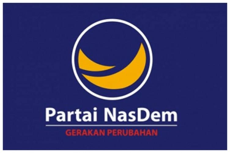 Partai NasDem Mendukung untuk Tidak Merevisi UU Pemilu