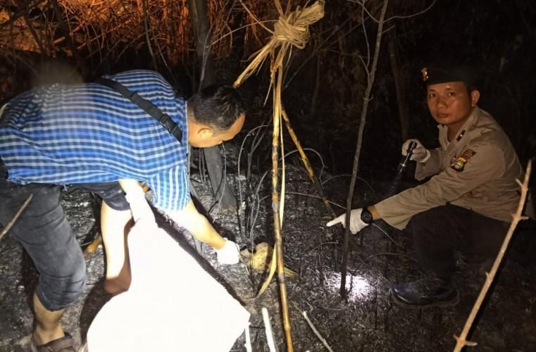 Pekerja PT ILP Temukan Tengkorak Manusia di Perkebunan Tebu