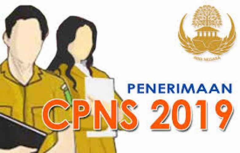 Pelamar CPNS Bandar Lampung yang Submit 875