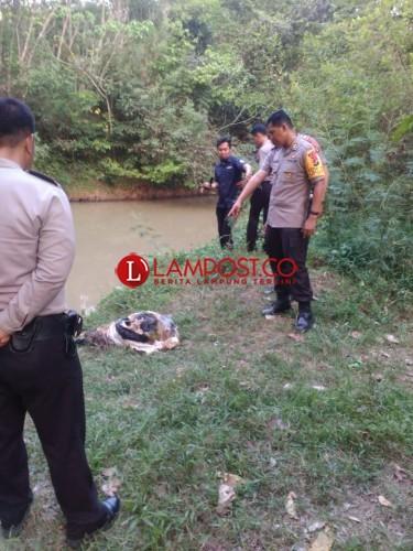 Pemancing Temukan Tulang  Manusia dalam Karung di Sungai