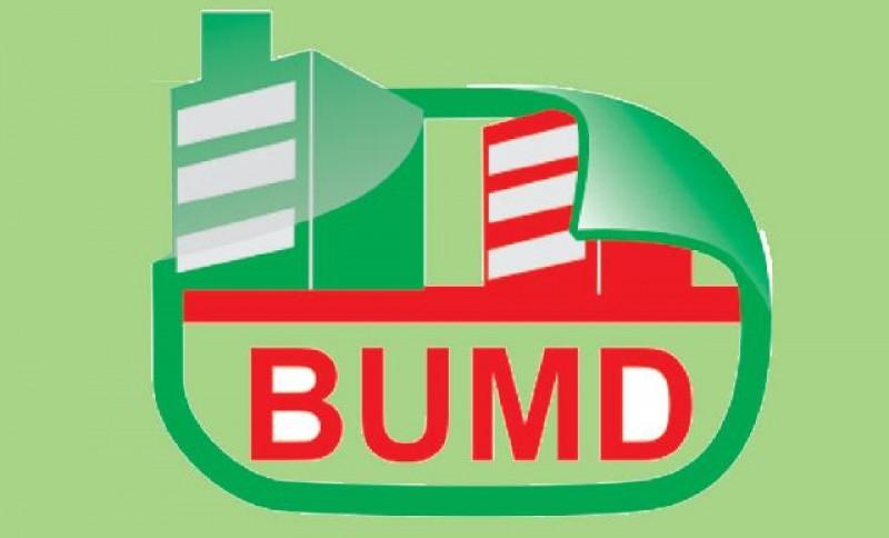 Pembentukan BUMD Pringsewu Batal karena Perda Penyertaan Modal Belum Disahkan