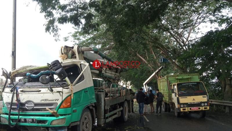 Pemerintah Wajib Tanggung Jawab Korban Pohon Tumbang