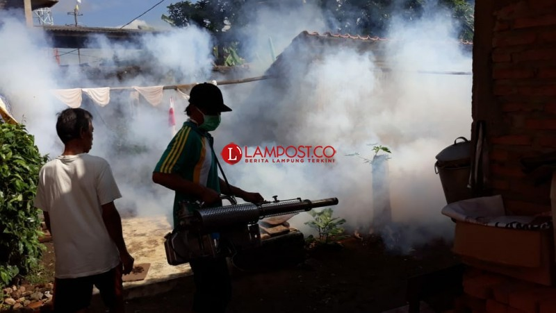 Pemkab Lampung Barat Gaungkan Pemberantasan Sarang Nyamuk