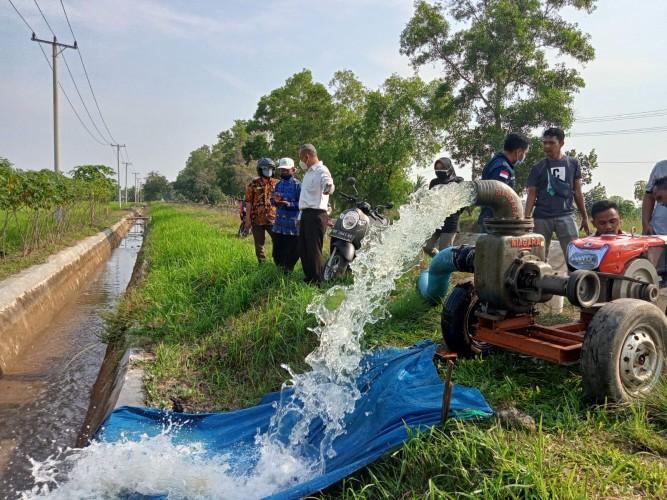 Pemkot Metro Terjunkan Pompa Air Atasi Kekeringan 122 Hektare Sawah