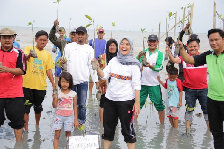 Pemprov Lampung Galakkan Penanaman Mangrove Cegah Abrasi Pesisir