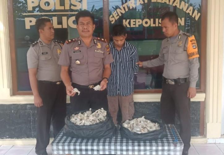 Pencuri Sarang Burung Walet Ditangkap