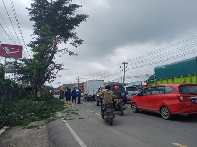 Penebangan Pohon di Hajimena Bikin Macet