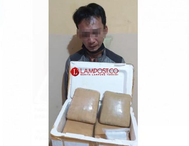 Pengedar 4,1 Kg Ganja Ditangkap di Sultan Agung