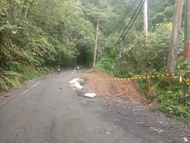 Pengendara di Jalur Liwa-Krui Diimbau Waspada Longsor dan Pohon Tumbang