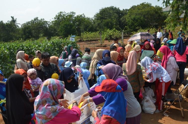 Pengunjung Panen Raya Melon di Bapeltan Membludak