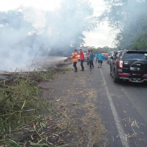 Penyebab Lahan Terbakar di Kampung Banjarmasin Masih Gelap