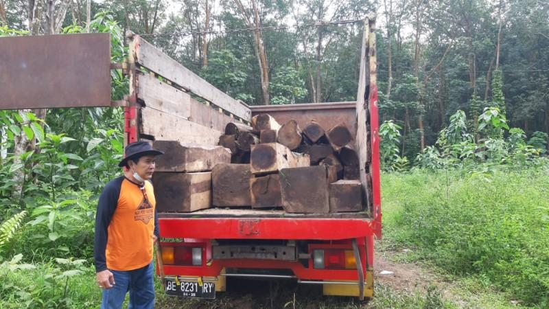 Penyelundupan 44 Batang Sonokeling Ilegal Digagalkan