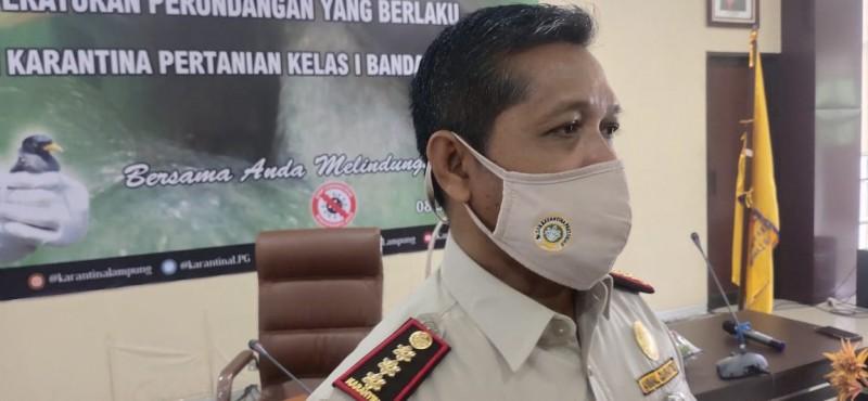 Penyelundupan Burung dari Sumatera ke Pulau Jawa Meningkat