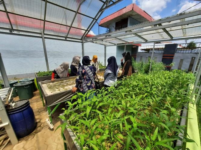Pertamina Edukasi Penghuni Lapas Perempuan Palembang Kembangkan Budidaya Hidroponik
