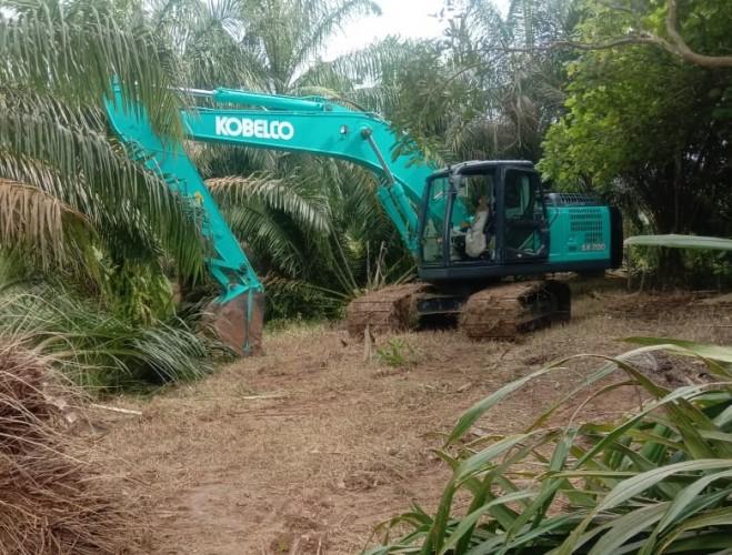 Perusakan Kebun Sawit di Gunungsugih Dibawa ke Ranah Hukum