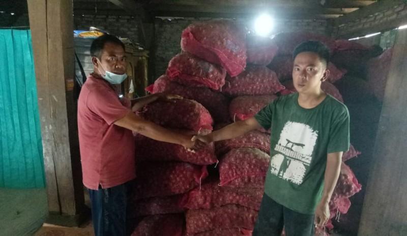 Petani di Lambar Terima Program Budi Daya Bawang Merah