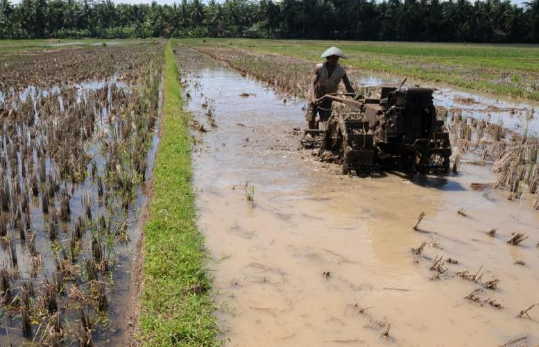 Petani Lamsel Diimbau Bijak Manfaatkan Sumber Air