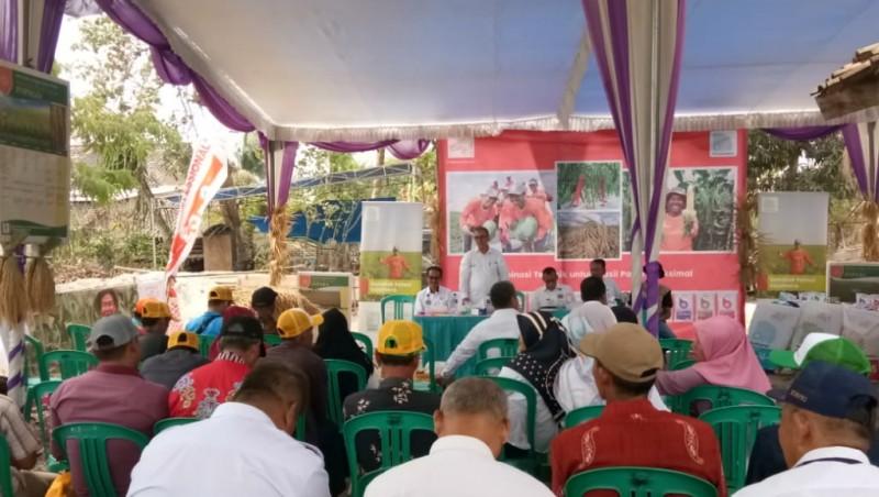 Petani Sragi Diminta Kembangkan Pertanian Jadi Kawasan Agrowisata
