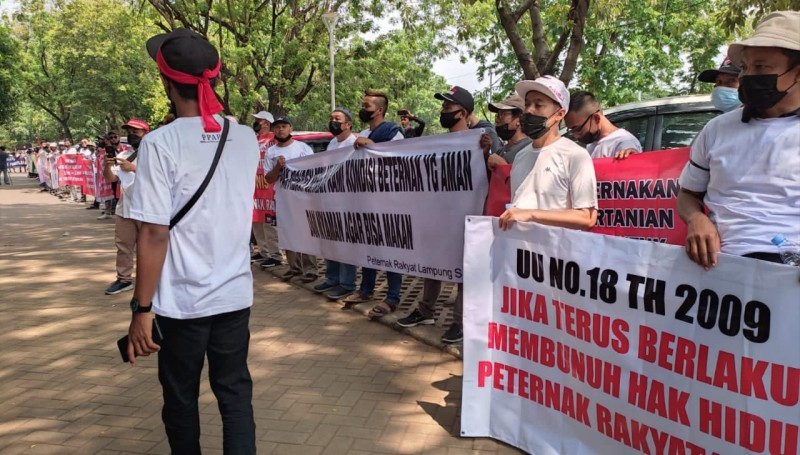 Peternak Unggas Demo di Jakarta Buntut Harga Telur Anjlok