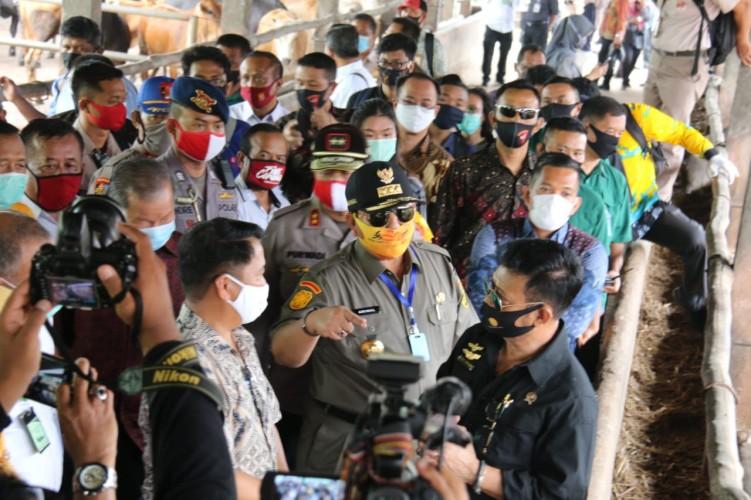 Peternakan Lampung Bisa Jadi Percontohan Nasional
