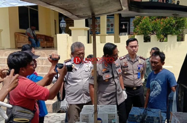 Petugas Gagalkan Penyelundupan Ribuan Burung ke Jakarta