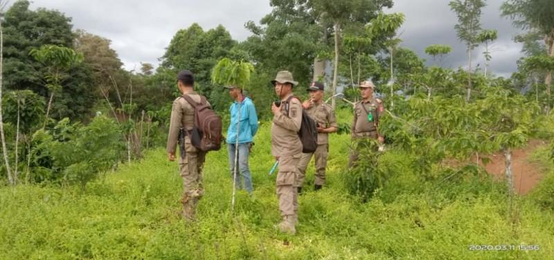 Petugas Terus Pantau Keberadaan Belasan Gajah di Suoh
