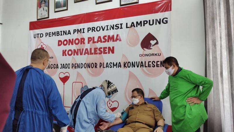 PMI Lampung Buka Layanan Donor Plasma