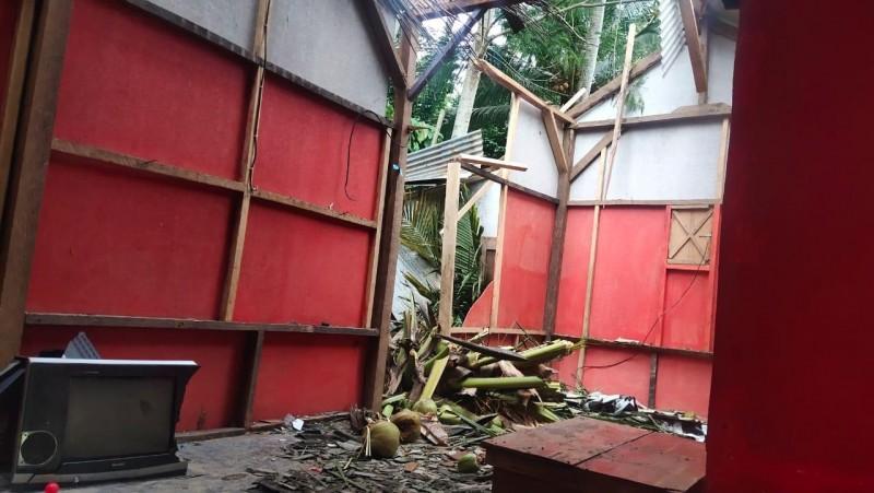 Pohon Kelapa Timpa Rumah di Telukpandan
