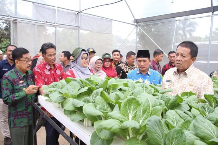 Polinela Diminta Perkuat Lampung Jadi Lokomotif Pertanian Nasional