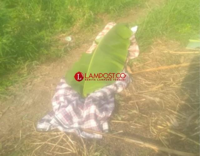 Polisi Buru Penembak Warga Palas yang Kabur ke Lamtim
