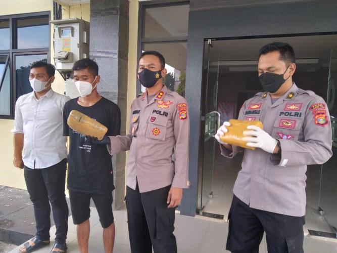 Polisi Tangkap Bandar Ganja di Batanghari Nuban