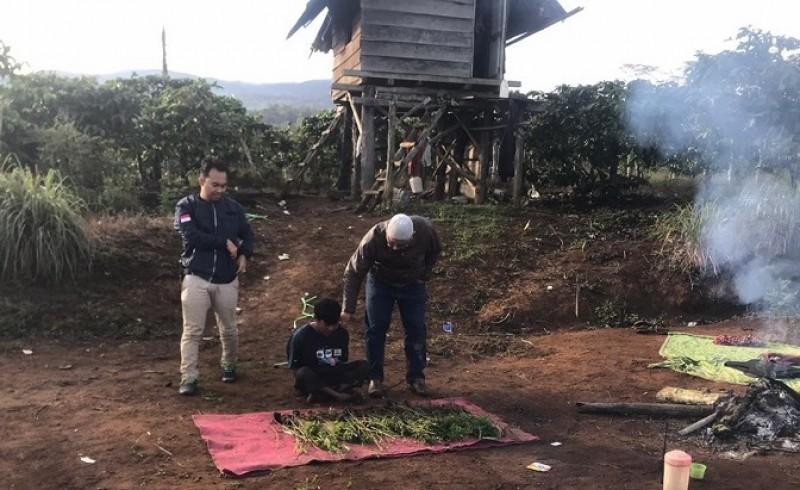 Polisi Temukan Tiga Hektare Ladang Ganja