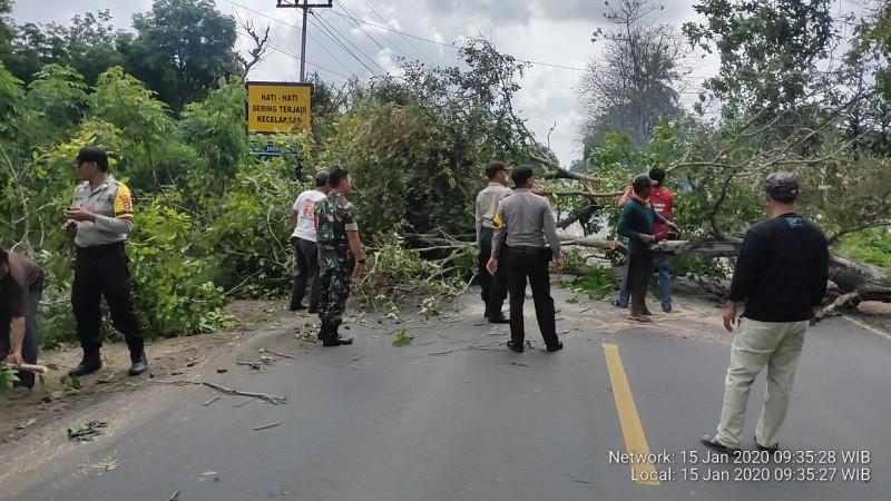 Polisi - TNI Bersama Masyarakat Tebang Pohon Rawan Tumbang di Jalinteng