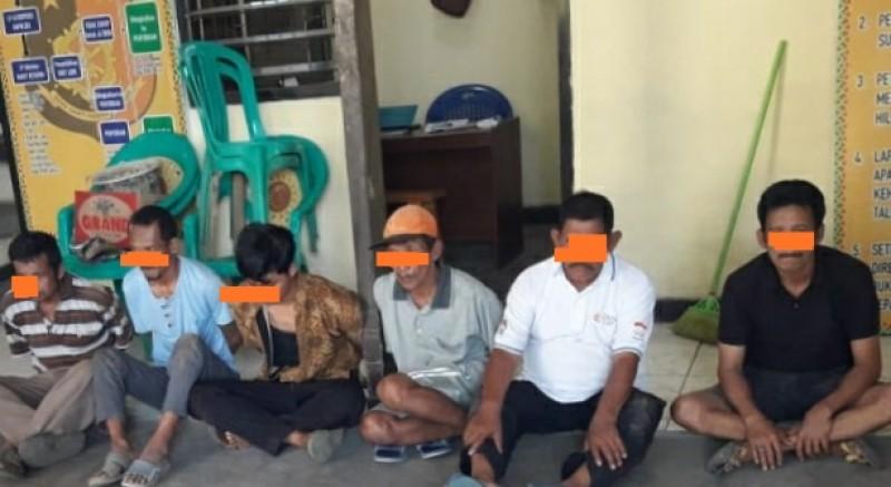 Polsek Talangpadang Ciduk 6 Terduga Judi Sabung Ayam