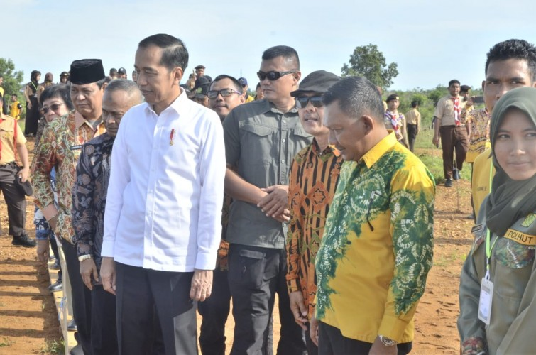 Presiden Tanam Pohon Mersawa di HPN 2020